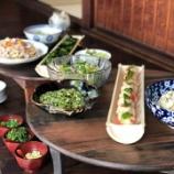『農と里山ワークショップ(夏野菜と流し素麺)』の画像