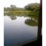 『日本庭園』の画像