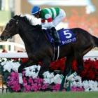 『【ホープフルステークス】サートゥルナーリア無傷戴冠! シーザリオの仔からまたGⅠ馬誕生』の画像