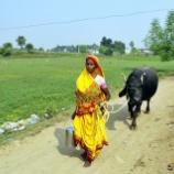 『(2012年 北インド):10.何にも無い1日(19日目)』の画像