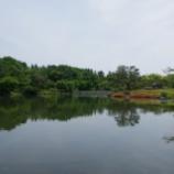 『再開の国営昭和記念公園Ⅲ;立川市』の画像
