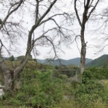 『【乃木坂46】白石麻衣がドキュメンタリーの映像で指にテーピングをしていた理由・・・』の画像