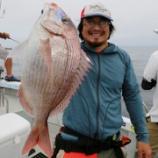 『7月26日 釣果 スーパーライトジギング マダイは2キャッチ!! 大鯛惜しいっ!!』の画像