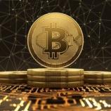 『【朗報】アメリカで10万円の少額ビットコイン投資家が急増している模様!背景にはFRBの大規模金融緩和による米ドル不信。』の画像