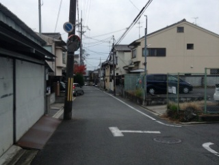 外国人「なんで日本の街並みってどこ行ってもこんな感じなの?」