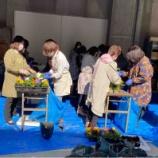 『 お花の植え替え.  第7回女性部理事会.』の画像