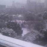『(東京)雪だぁ〜!』の画像