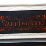 『フランスベットからSlumberlandのSLエランが入荷』の画像