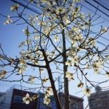 『【写真】 新宿~地元 a7R』の画像