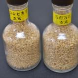 『お米の精米歩合について』の画像