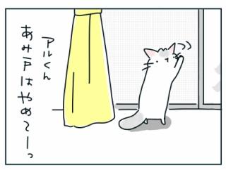 外国映画を観た後に猫に通じるかやってみたジェスチャー
