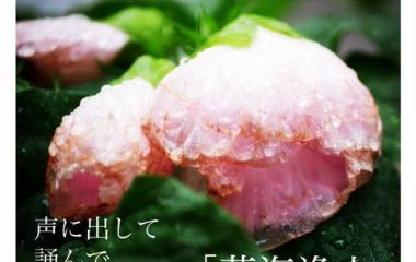 『石牟礼道子さん読書会のお知らせ9月と10月』の画像