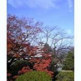 『紅葉と鶴ケ城』の画像