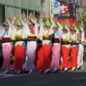 第17回湘南台ファンタジア2015 その51(神奈川大和阿波踊り振興協会)