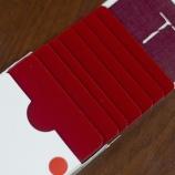 『カーディストリー練習用カードブロック!(Red)』の画像