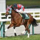 『【京都牝馬S結果】イベリスが逃げ切り重賞2勝目』の画像