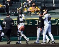 阪神・負傷交代の原口に矢野監督「骨は異常ない」ファウルが右手親指直撃