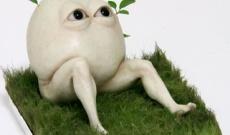 【乃木坂46】リアルな「どいやさん」作ったったwww