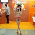東京ゲームショウ2012 その67(SHINTEC)
