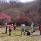 『雁田山ハイキング』の画像