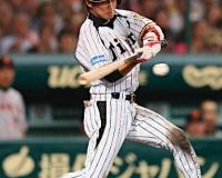 阪神の俊介とかいう中堅野手wwwwwww