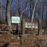 『3月の狭山緑地・多摩湖・二つ池公園;東大和市』の画像