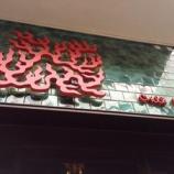 『ミシュラン一つ星☆セントラルの四川料理「麻辣燙 Chilli Fagara」』の画像