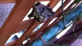 ベランダにスズメバチの巣があるんだが親父のせいで駆除できぬ