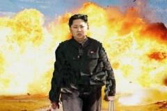 北朝鮮のミサイルでお魚さんたちが・・・(´;ω;`)ウッ…