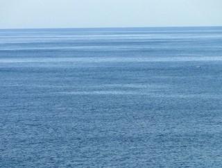 ワイが海で拾ったゴミ、メルカリで売った結果・・・・・・