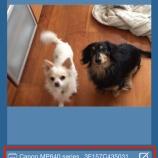 『iPhone/iPadの印刷アプリ、Prime Printのプリンター設定方法』の画像