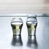 『ヴィレッジヴァンガードオンライン店で取扱い開始。モダンと伝統が融合した美しい酒器・グラスで晩酌を』の画像