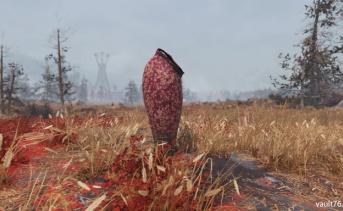 巨大な食虫植物