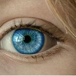 【画像】この画像が何に見えるかで目の健康状態がわかるらしいwww