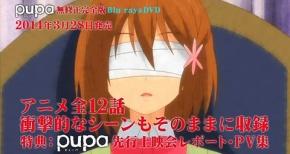 『pupa』DVD&Blu-ray予約開始キタ―――(゚∀゚)―――!!!!修正無し12話、特典も!!