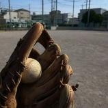 『球技で遊びたいならオススメの公園、足立区「北鹿浜公園」』の画像