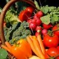こ の 世 か ら 消 え た ら 一 番 困 る 野 菜