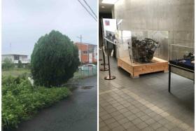 もこもこの木といきいきの飛燕のこと〜戦争中星田に墜落した場所と現在の展示場所をめぐる〜