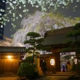 『【写真】 RX1 常圓寺 満開、散り始め 』の画像