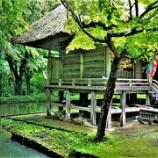 『中尊寺へ⑥』の画像