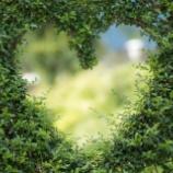 『幸せの遺伝子と心の在り方』の画像