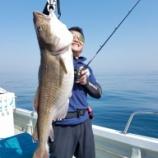 『4月21日 釣果 スロージギング貸切』の画像