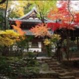 『長楽寺 [情報]』の画像