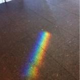 『(番外編)川口駅前キュポ・ラ1階にレインボーの光が!』の画像