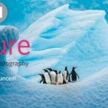 『自然写真コンテスト:カリフォルニア科学アカデミー』の画像