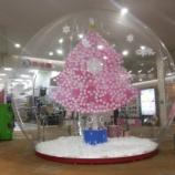 『サクラス・クリスマスドーム』の画像