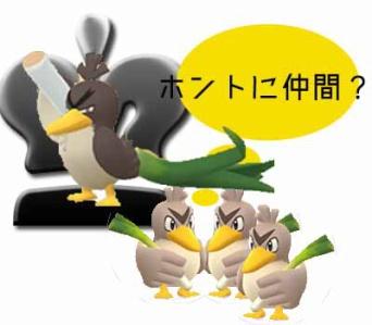 カモネギ 進化 報酬