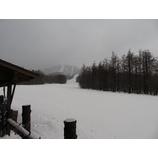 『雨から雪へ変わりました。バッジテスト2/6開催。』の画像