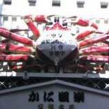 『(京)ただ今休業中』の画像