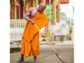 【画像】ガチムチ過ぎる僧侶が話題 これはリアルモンクですわ